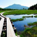 尾瀬の見どころは水芭蕉だけじゃなく草紅葉もイチオシ 群馬県が誇る国立公園