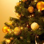 冬のボーナスが支給されなかった我が家の節約クリスマス